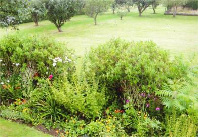garden-best