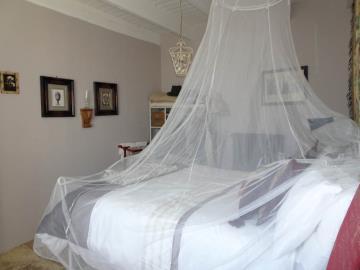 Downstairs-Bedroom