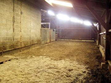 bergerie-stable