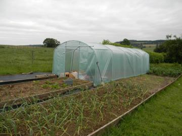 Poly-Tunnel