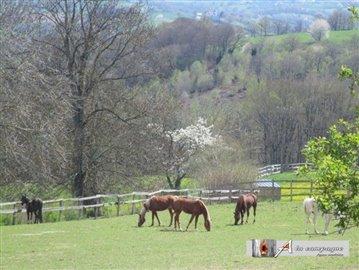 maison-ferme-rougnat-vente-1497601571-vm10001
