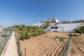 Image No.32-Maison / Villa de 4 chambres à vendre à Azinhal