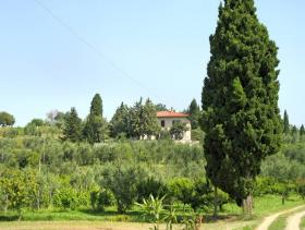 Image No.13-Villa de 3 chambres à vendre à Palaia