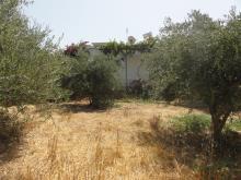 Image No.8-Villa / Détaché de 3 chambres à vendre à Almyrida