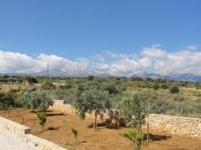 Image No.8-Villa / Détaché de 3 chambres à vendre à Douliana