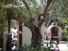 Image No.4-Villa / Détaché de 4 chambres à vendre à Gavalohori