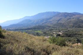 Image No.2-Terre à vendre à Exopolis