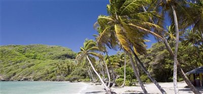 Firefly Hotel and Beach Estate Bequia 25.4 Acres Image 5
