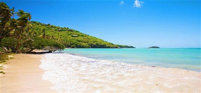 Firefly Hotel and Beach Estate Bequia 25.4 Acres Image 6