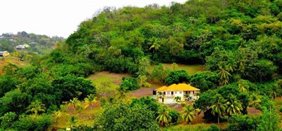 David Estate House and 8 Acres of Fertile Land Image 1