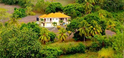 David Estate House and 8 Acres of Fertile Land Image 2