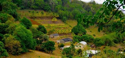 David Estate House and 8 Acres of Fertile Land Image 3