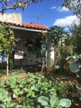 Image No.3-Maison de 4 chambres à vendre à Proença-a-Nova