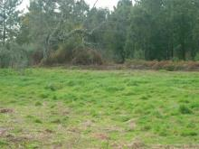 Image No.4-Country Property for sale