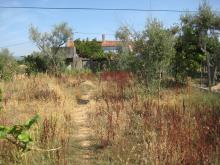 Image No.18-Propriété de pays à vendre à Sertã