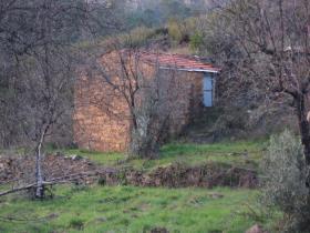 Image No.0-Propriété de pays à vendre à Sertã