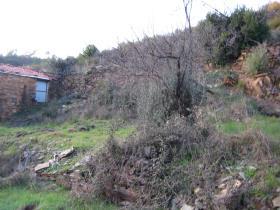 Image No.12-Propriété de pays à vendre à Sertã
