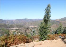 Image No.8-Terre à vendre à Oleiros