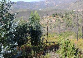 Image No.12-Terre à vendre à Oleiros