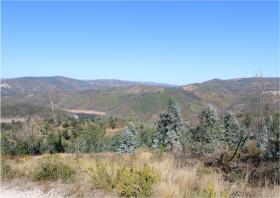 Image No.14-Terre à vendre à Oleiros