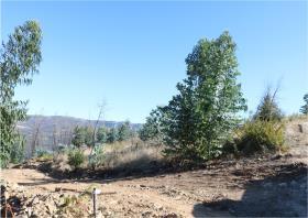Image No.15-Terre à vendre à Oleiros