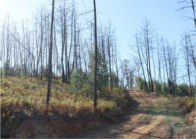 Image No.16-Terre à vendre à Oleiros