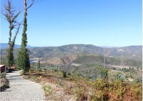 Image No.26-Terre à vendre à Oleiros