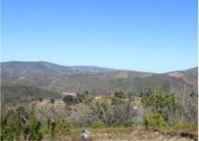 Image No.27-Terre à vendre à Oleiros