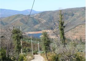 Image No.28-Terre à vendre à Oleiros