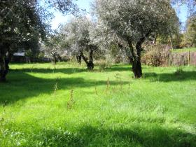 Image No.22-Country Property for sale