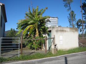 Image No.4-Propriété de pays de 2 chambres à vendre à Cernache do Bonjardim
