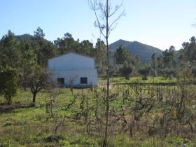 Image No.36-2 Bed Country Property for sale