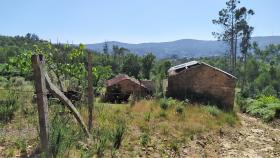 Image No.3-Propriété de pays à vendre à Castanheira de Pêra