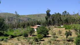 Image No.0-Propriété de pays à vendre à Castanheira de Pêra