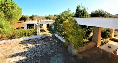 24view-terrace