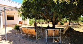 Image No.1-Villa de 3 chambres à vendre à Ostuni