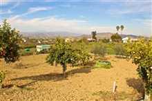 Image No.6-Propriété de 5 chambres à vendre à Alhaurín el Grande