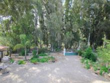 Image No.20-4 Bed Finca for sale