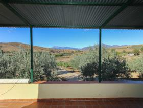 Image No.16-2 Bed Finca for sale