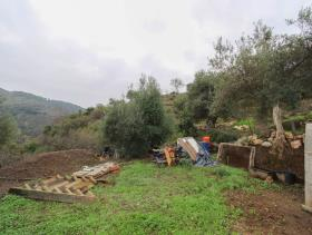 Image No.4-1 Bed Land for sale