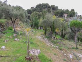 Image No.6-1 Bed Finca for sale