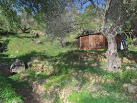 Image No.23-2 Bed Finca for sale