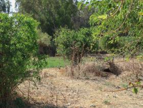 Image No.8-Plot for sale
