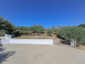 Image No.29-3 Bed Finca for sale