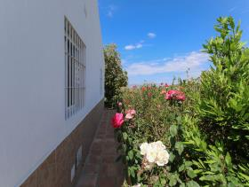 Image No.28-2 Bed Finca for sale