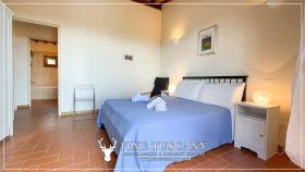 Image No.26-Maison de 2 chambres à vendre à Lajatico