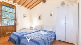 Image No.33-Maison de 2 chambres à vendre à Lajatico
