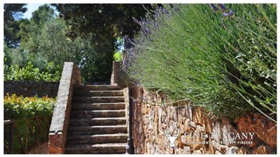 1-Bedroom-Property-for-sale-in-Tuscany-Italy-20