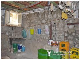 Image No.27-Maison de 3 chambres à vendre à Lajatico
