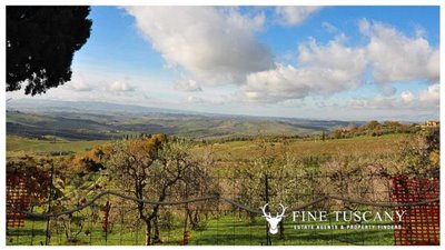 2-shell-homes-for-sale-in-Palagio-Montaione-Tuscany-43